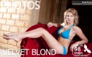 Velvet Blond