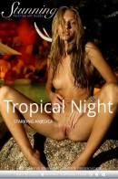 Anjelica - Tropical Night