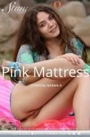 Norma A - Pink Mattress