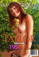 Taylor - Warm Pool