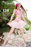 Sunna - Wildrose