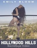 Hollywood Hills - Backstage