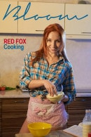 Red Fox in Cooking gallery from THEEMILYBLOOM