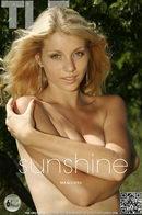 Maquiera - Sunshine