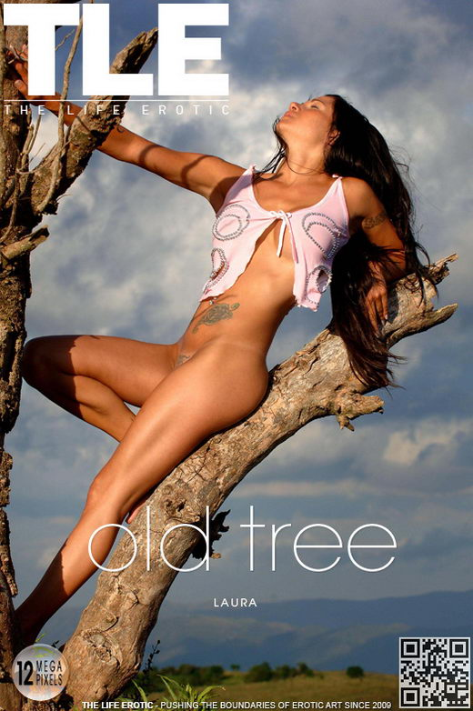 Laura - `Old Tree` - by Oliver Nation for THELIFEEROTIC