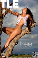 Laura in Old Tree gallery from THELIFEEROTIC by Oliver Nation