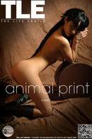 Charo - Animal Print