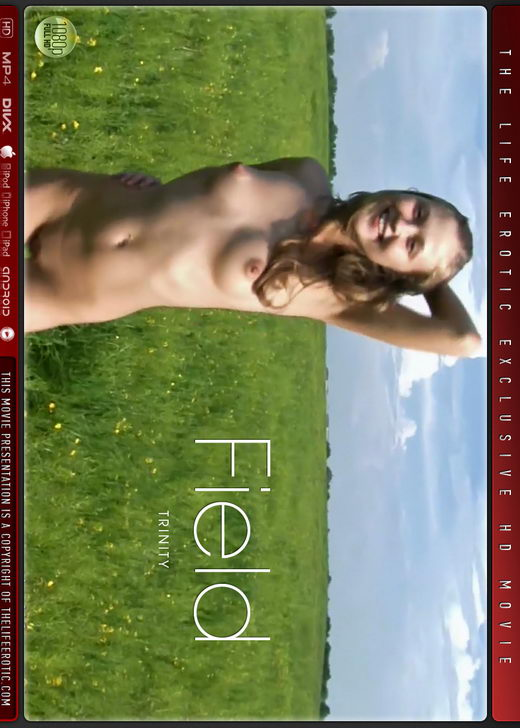 Trinity - `Field` - for THELIFEEROTIC