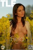 Casey - Field