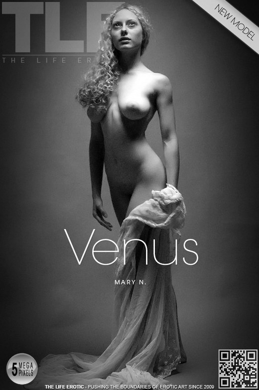 Mary N - `Venus` - by Oliver Nation for THELIFEEROTIC