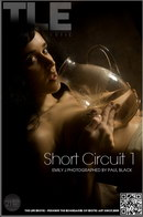 Short Circuit 1