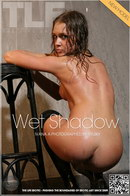 Wet Shadow