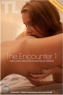 The Encounter 1