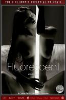 Melena A - Fluorescent