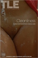 Illaria in Cleanliness gallery from THELIFEEROTIC by Angela Linin