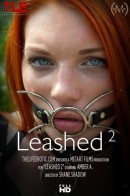 Amber A in Leashed 2 video from THELIFEEROTIC by Shane Shadow