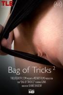 Bag Of Tricks 2