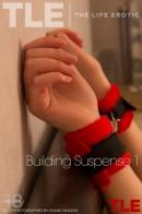 Building Suspense 1