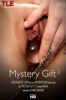 Maija in Mystery Gift 2 video from THELIFEEROTIC by Shane Shadow