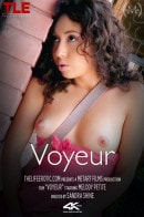 Melody Petite in Voyeur video from THELIFEEROTIC by Sandra Shine