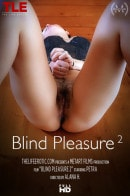 Petra in Blind Pleasure 2 video from THELIFEEROTIC by Alana H