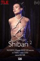 Shibari 2