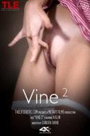 Vine 2