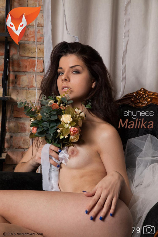 Malika in Shyness gallery from THEREDFOXLIFE