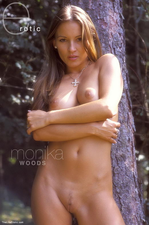 Monika - `Woods` - for TLE ARCHIVES