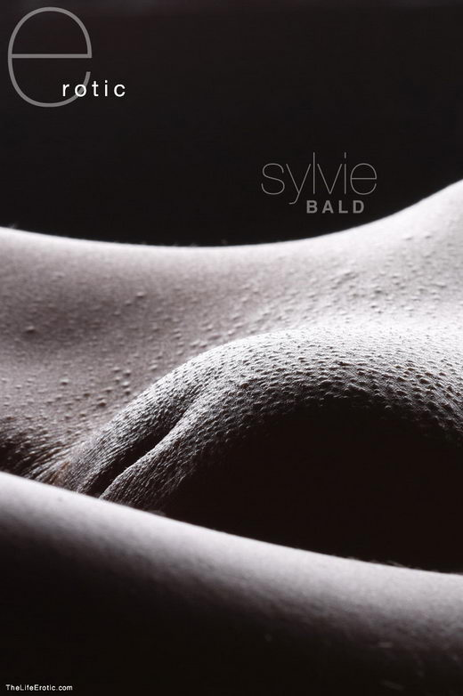 Sylvie - `Bald` - for TLE ARCHIVES