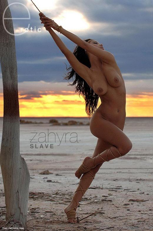 Zahyra - `Slave` - for TLE ARCHIVES