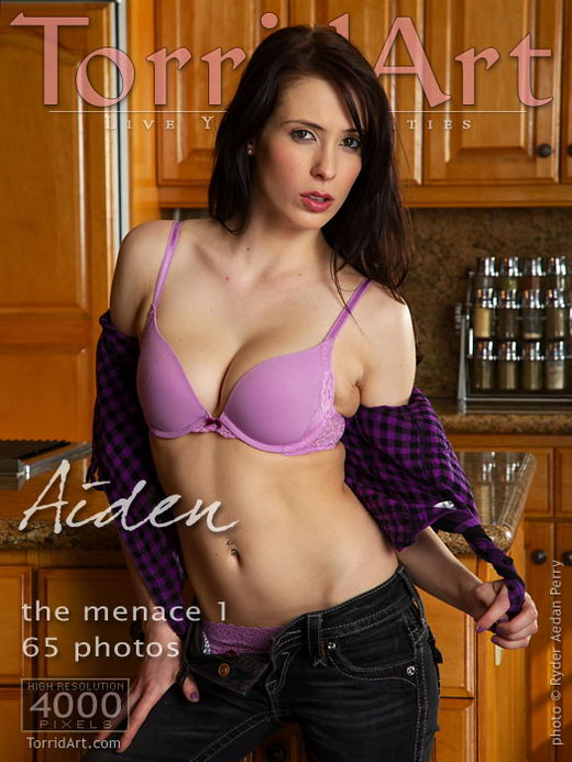 Aiden - `The Menace - Part 1` - by Ryder Aedan Perry for TORRIDART