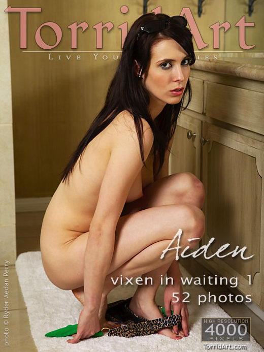 Aiden - `Vixen In Waiting 1` - by Ryder Aedan Perry for TORRIDART