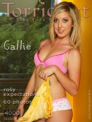 Callie in Rosy Expectations 1 gallery from TORRIDART by Ryder Aedan Perry