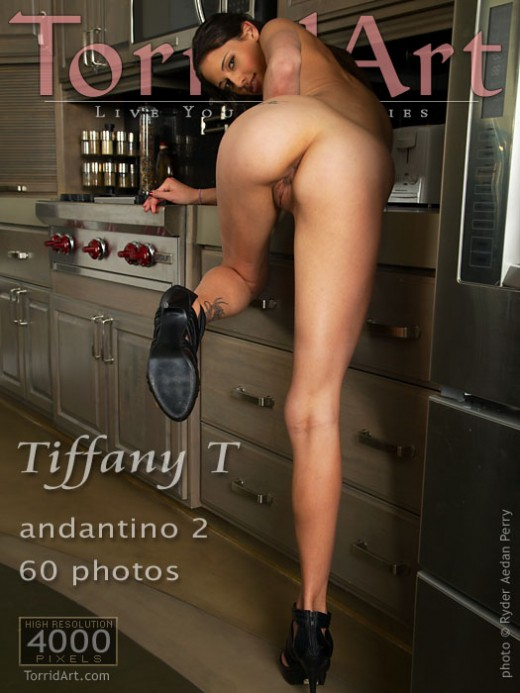 Tiffany T - `Andantino 2` - by Ryder Aedan Perry for TORRIDART