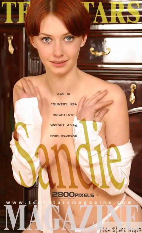 Sandie - for TSM MODELS