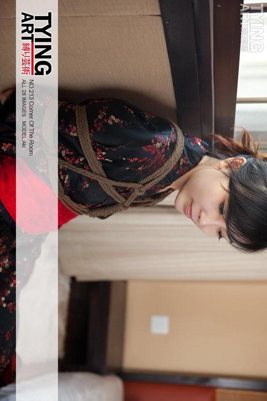 Aki - `213 - Corner of the Room` - for TYINGART