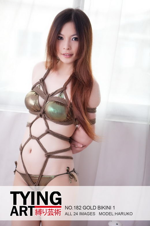 Haruko - `182 - Gold Bikini 1` - for TYINGART