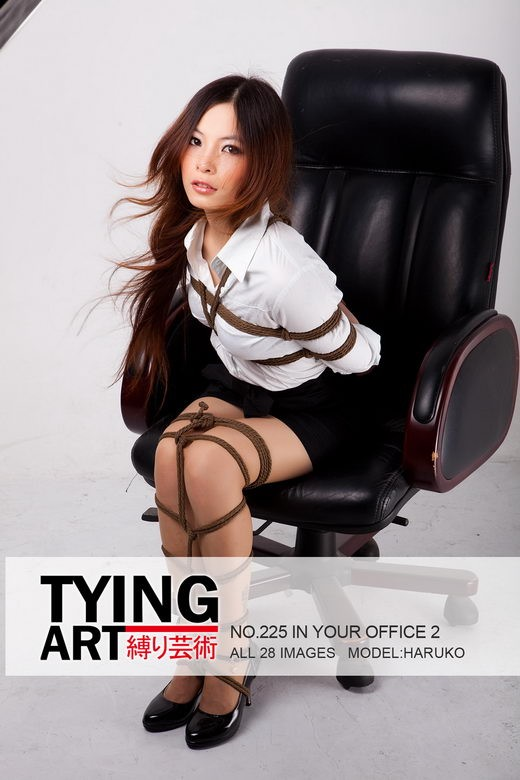 Haruko - `225 - In Your Office 2` - for TYINGART