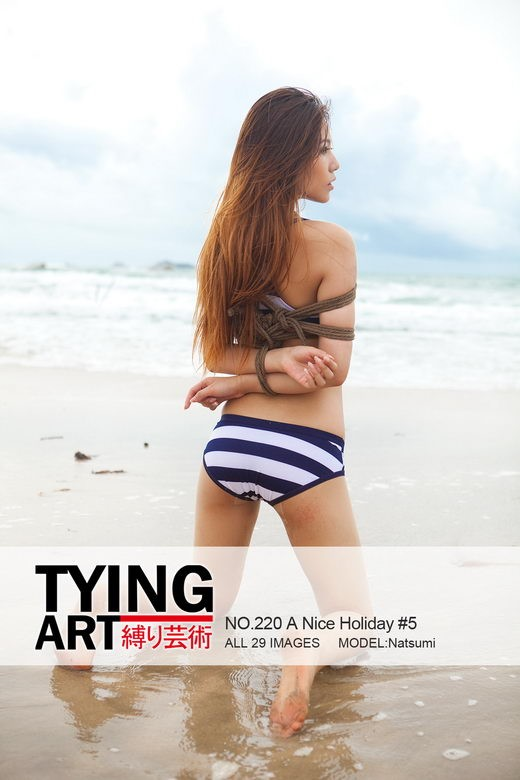 Natsumi - `220 - A Nice Holiday 5` - for TYINGART