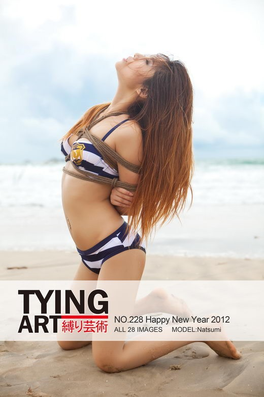 Natsumi - `228 - Happy New Year 2012` - for TYINGART