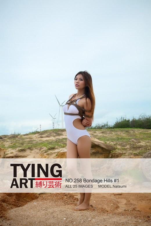 Natsumi - `258 - Bondage Hills #1` - for TYINGART