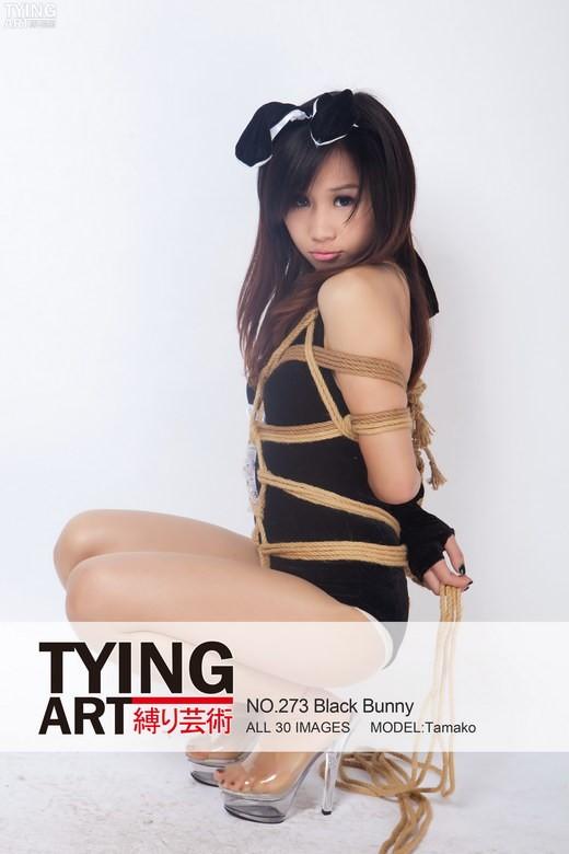 Tamako - `273 - Black Bunny` - for TYINGART