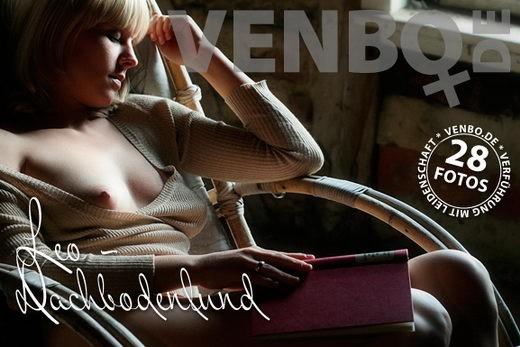 Leo - `Dachbodenfund` - by Tom Hiller for VENBO