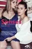 Senses Scene 2 - Sight