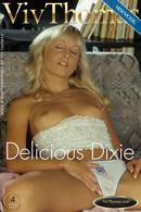 Delicious Dixie
