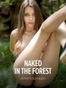 Milla in Naked In The Forest gallery from WATCH4BEAUTY by Mark
