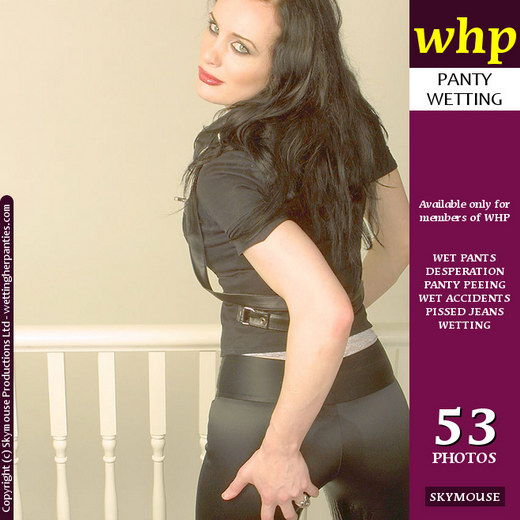 Morrigan - `Morrigan Wets Her Panties In Her Dark Sultry Manner` - by Skymouse for WETTINGHERPANTIES