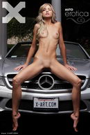 Auto Erotica