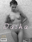 Dasha - Introducing Dasha